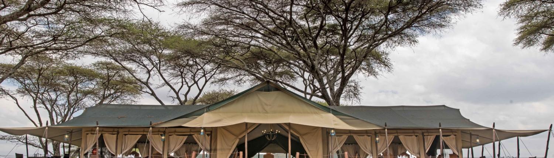 Ole Seria Luxury Camp - Turner Springs