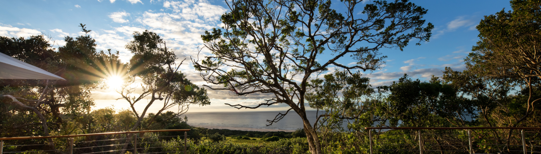 "alt=""oceana beach and wildlife reserve"""